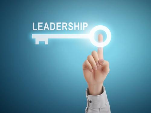Leadership teams - the leadership development focus of the future